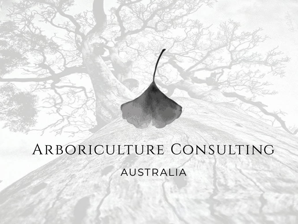 Arboriculture Consultancy Australia, WordPress website development by Banter Group